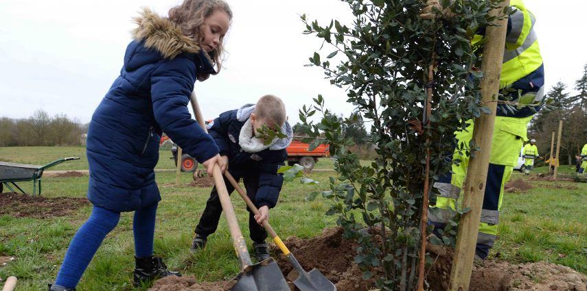Plantations de 45 arbres avec les élèves de CP de l'école La Bourie.
